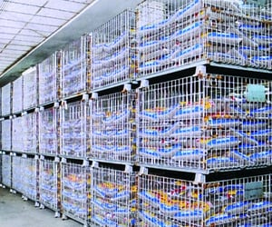 cage pallet, laundry cart, and stillage steel pallet image
