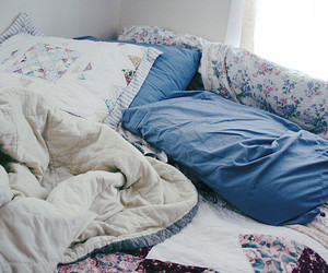 bed, flowers, and morning image