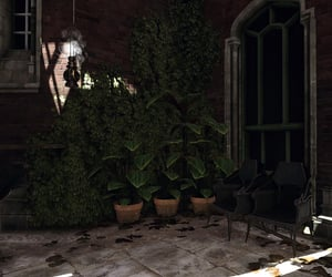 dark, flora, and potted plant image