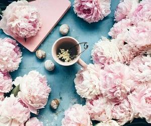 blue, light pink, and mug image