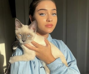cat, girl, and blue image