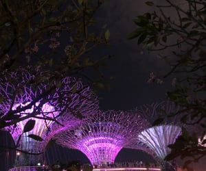 asia, pink, and singapore image