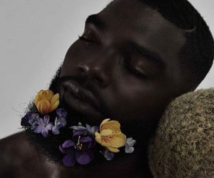 black beauty, flowers, and photoshoot image