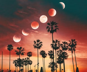 eclipse, moon, and backgrounds image