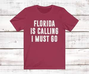 etsy, florida state shirt, and fashion image