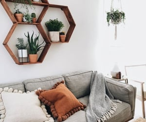 couch, cushions, and interior image