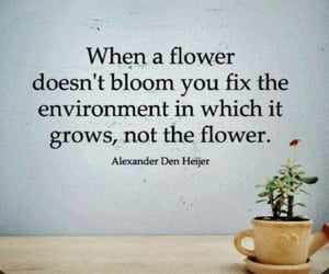 flower, quote, and aspergers image