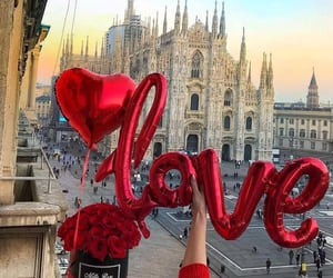 love, rose, and city image