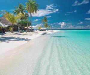 beach, sky, and tropical image