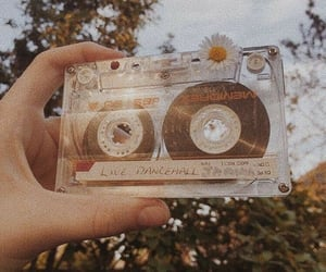 aesthetic, vintage, and photography image