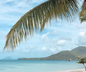 martinique, plage, and voyage image