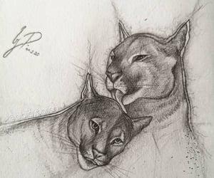 animal, draw, and painting image