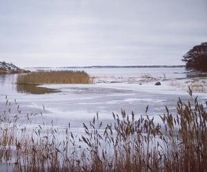 finland, sea, and winter image