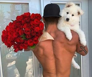dog, boy, and flowers image