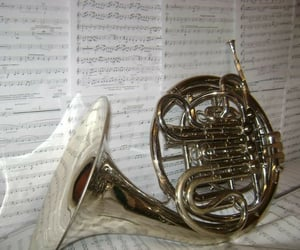 french horn, sheets, and instrument image