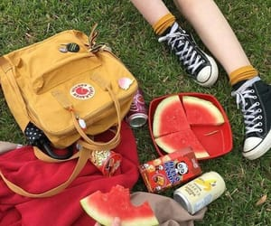aesthetic, picnic, and watermelon image