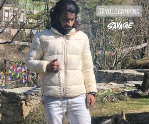 Himalayas, yolo camping, and ice husky image