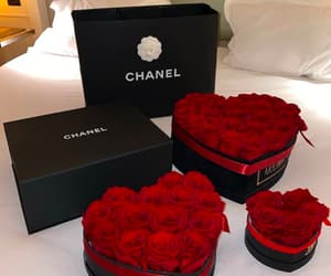 chanel, roses, and love image