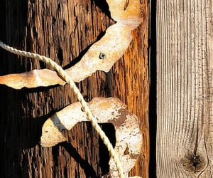 numbers, wooden, and rustic image