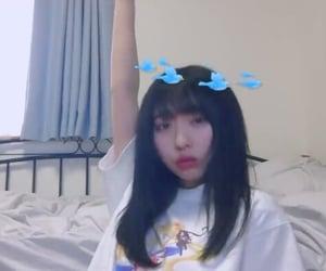 beautifulgirl, bluebird, and girl image