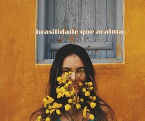 article, brasil, and brazil image