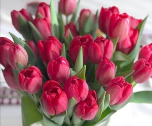 bouquet, tulips, and bouquet of flowers image