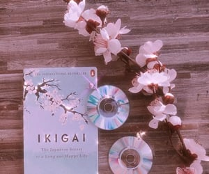 aesthetic, books, and cherry blossom image