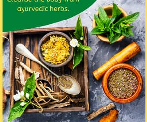health, herbs, and medicines image