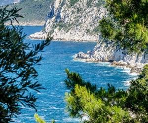 beach, cliffs, and green image