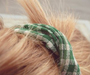 blonde, green, and hair image