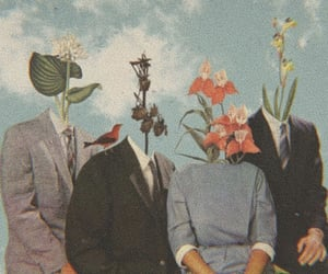 art, flowers, and vintage image