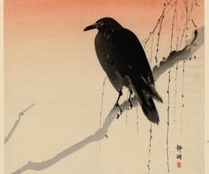 art, crow, and ink image