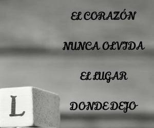 amor, frases español, and pasión image