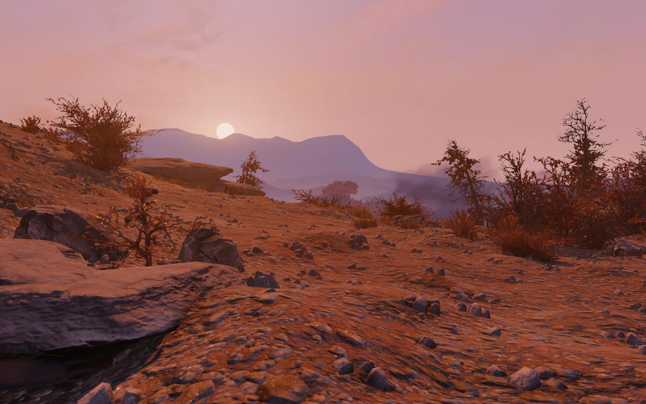 arizona, desert, and old image