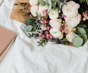 background, bouquet, and photography image