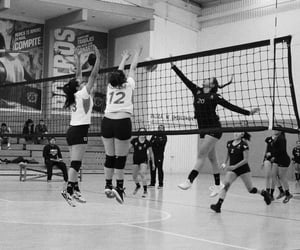volleyball, voleibol, and potros image