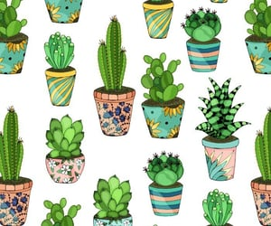 cactus, green, and pattern image