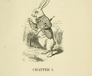alice in wonderland, antique, and books image