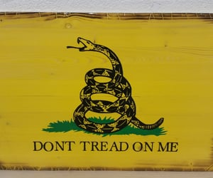 etsy, gift for men, and dont tread on me image