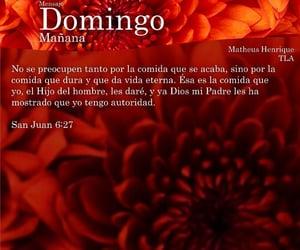 cristiano, biblia, and amor image