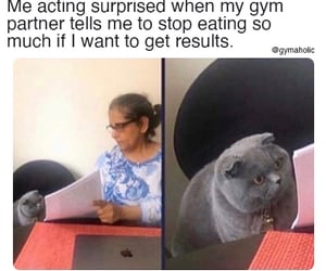 fitness, meme, and workout image