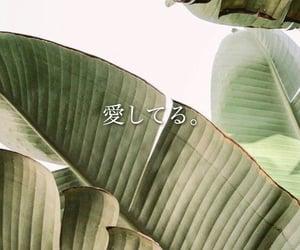aishiteru, I Love You, and japanese image