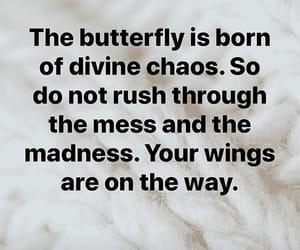 divine chaos, do not rush, and the mess image
