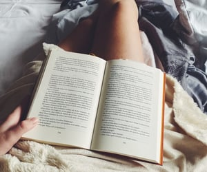 bed, book, and chill image