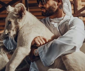 animals, boys, and celeb image