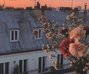 flowers, aesthetic, and sunset image