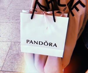 bag, buy, and pandora image
