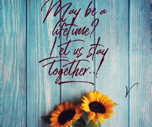 quote, together, and mylove ​ image
