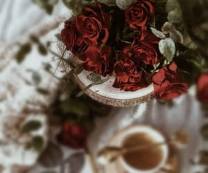 cozy, flowers, and roses image
