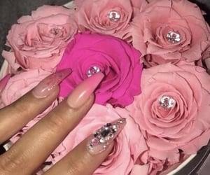 nails, pink roses, and pink image